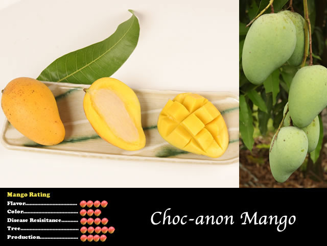 anon fruit - photo #32