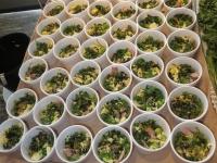 Somen Salad