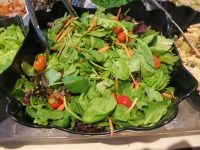Mixed Field Greens Salad