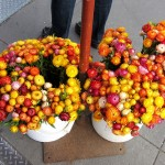 sf_farmers_market21