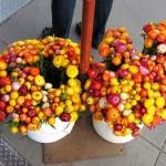 sf_farmers_market21