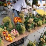 sf_farmers_market23