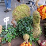 sf_farmers_market27