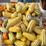 sf_farmers_market47