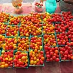 sf_farmers_market53