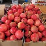 sf_farmers_market99