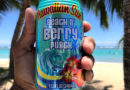 Hawaiian Sun Launches Beach n' Berry Punch