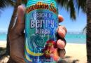 Hawaiian Sun Launches Beach n' Berry Punch
